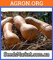 Арабатская - Семена тыквы