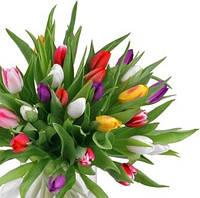 8 Марта - первый весенний праздник + грандиозные скидки в подарок!
