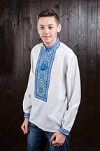 Мужская вышиванка с синей вышивкой Тарас, фото 3