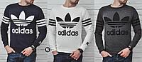Мужской свитшот Adidas Originals 3 цвета в наличии