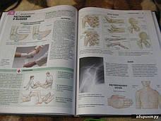 Атлас анатомии Адольфо Кассан, фото 2