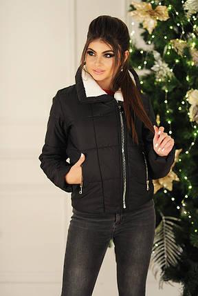 """Короткая женская куртка на молнии """"Alyaska"""" с воротником стойкой, фото 2"""