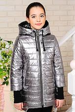 Детская демисезонная куртка Велли, серебро2, р.122-146, фото 2