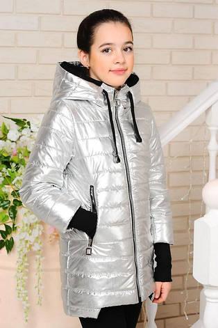 Детская демисезонная куртка Велли, серебро1, р.122-152, фото 2