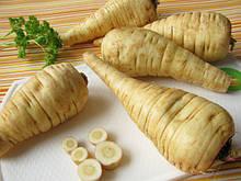 Семена пастернака 1 кг , Украина