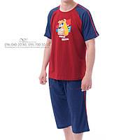 Мужская пижама / комплект для дома Arcano Men 665-1 футболка + бриджи, 100% х/б. Размер S
