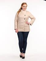 Женская куртка больших размеров на кнопках