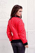 "Короткая женская куртка на синтепоне ""ROFER"" с манжетами (4 цвета), фото 3"