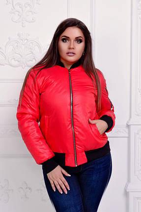 """Короткая женская куртка на синтепоне """"ROFER"""" с манжетами (большие размеры), фото 2"""