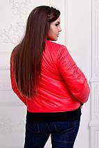 """Короткая женская куртка на синтепоне """"ROFER"""" с манжетами (большие размеры), фото 3"""