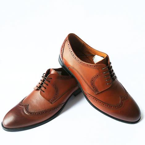 Стильная обувь Икос : мужские кожаные туфли, коричневого цвета, тонированные с перорацией