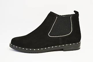 Ботинки замшевые женские Kento 1071, фото 2