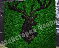 Панно з оленем стабілізованого моху Ягель, фото 1