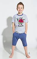 Пижама TARO 2216 ALAN SS18, размеры 134/140, 140/146, хлопок, Польша, фото 1