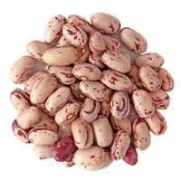 Семена ФАСОЛЬ