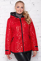 Р-50,52,54,56,58,60 Женская, стильная, красивая, демисезонная молодежная куртка ЛАКЕ больших размеров