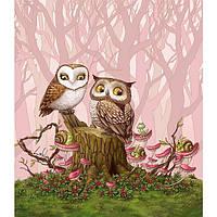 Картина по номерам 40х50 Влюблённые совы (GX21684)