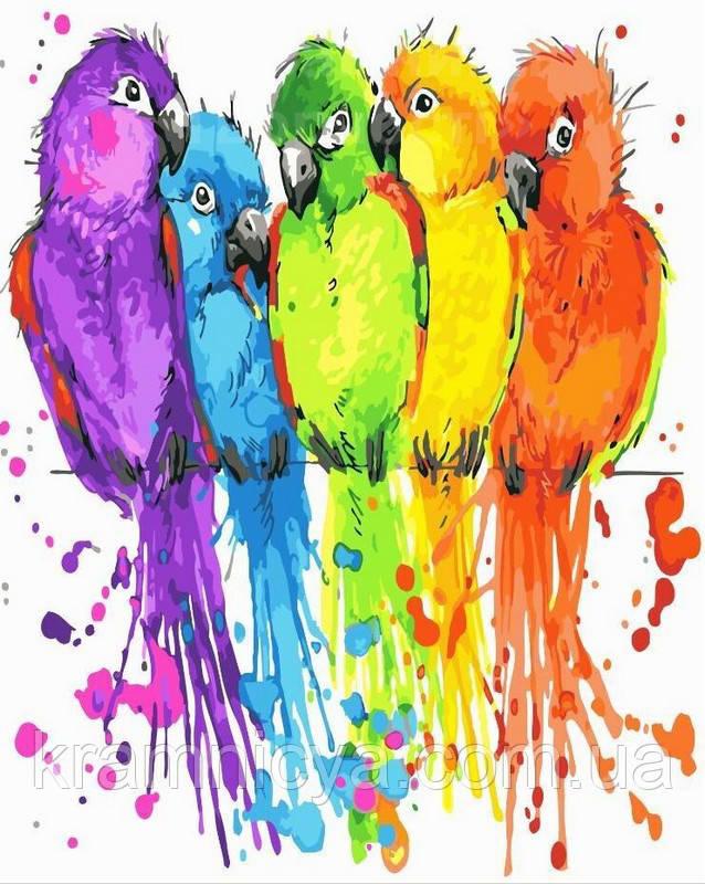 Картина по номерам 40х50 Пёстрые птички (GX22513)