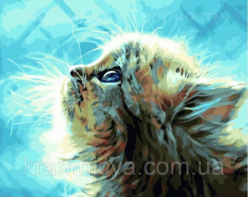 Картина по номерам 40х50 Пушистый котёнок (GX22449)