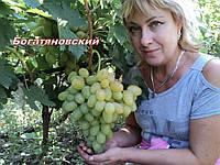 Богатяновский