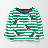 Кофта для мальчика Penguin Little Maven