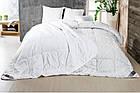 Одеяло Зима-Лето, Полуторное 140*210 см, фото 2