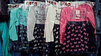 Платье для девочки на 3-6 лет с длинным рукавом розового,серого,бирюзового цвета в бабочках оптом