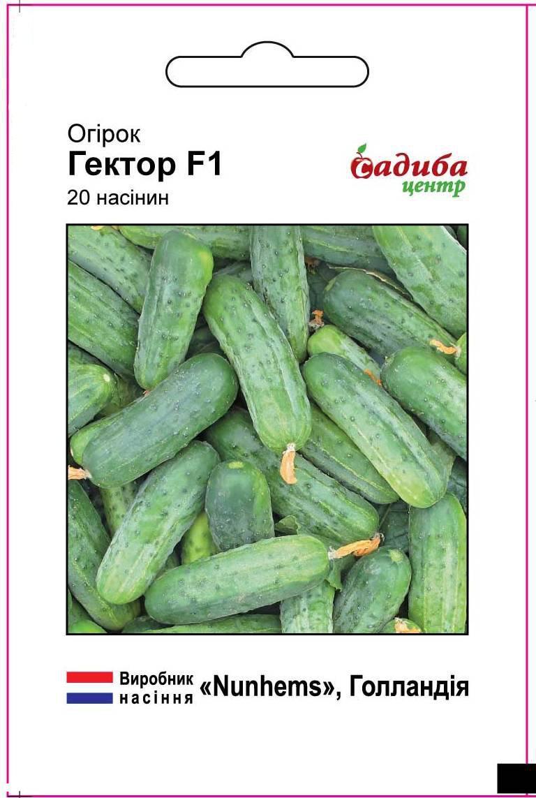 Огірок комахозапильний Гектор F1, 20шт (Голландия)