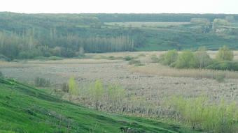 Зернохранилище в Великом Бурлуке 5