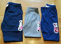 Лосины для девочек оптом, Miss WIfi, 4-12 лет, № YF-8393, фото 1