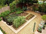 Шнуры веревки и нити в хозяйственно-бытовых и садовых нуждах.