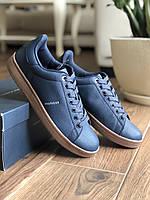 Мужские оригинальные кроссовки Tommy Hilfiger Lodus