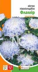 Семена Астра Фламир пионовидная (бело-голубая) 0,3 г
