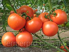 Семена томата Картье F1 \ Kartier F1 250 семян Clause
