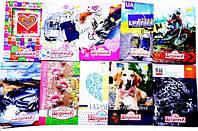 """Щоденник учнівський """"Відмінний"""" твердий NV-74504 кольор.внутр.блок (24) ш.к.978966273703"""