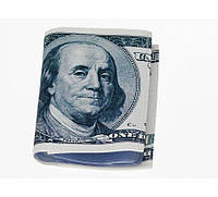 100 баксов - кредитница/визитница