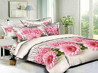 Двуспальный комплект постельного белья евро 200*220 хлопок  (6581) TM KRISPOL Украина