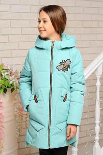 Куртка весна-осень Пчелка