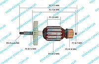 Якорь для электропилы Einhell GH-EC 2040,ИЖМАШ ИП-2450