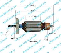 Якорь для электропилы  CRAFT-TEC EKS-1500, ТАЙГА ПЦ-1500