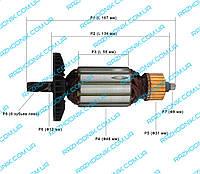 Якорь для электропилы Тайга ПЦ-2400/Craft-Tec EKS-2200