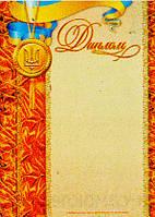 Диплом (оранж, з медалькою)