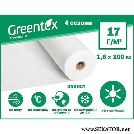 """Агроволокно """"GREENTEX"""", біле, фото 2"""