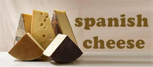 Испанский сыр - настоящий изысканный деликатес!
