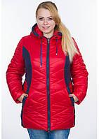 Куртка женская №26/2 (красный/синий)