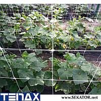 Шпалерна огіркова сітка Tenax HORTINET (Італія)