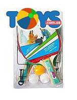 Набор для настольного тенниса с сеткой, BT-PPS-0047