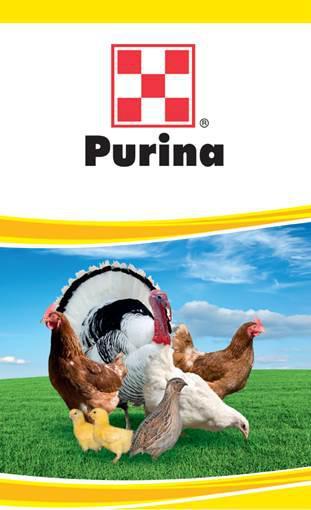 c6c7dea902c662 41015 Пуріна® Стартер Комбікорм для курчат та БРОЙЛЕРІВ: продажа ...