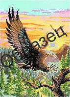 Схема для вышивки бисером «Орел»