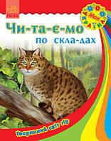 Моя Україна. Читаємо по складах: Тваринний світ гір
